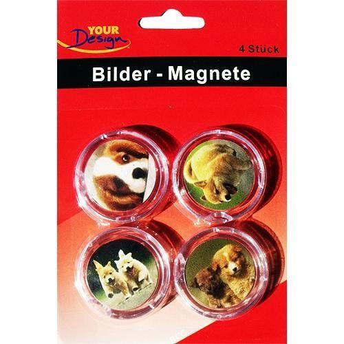 4 Bilder - Magnete zum selbst gestalten